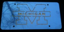 MICHIGAN_LICENSE PLATE